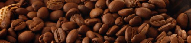 beans small header